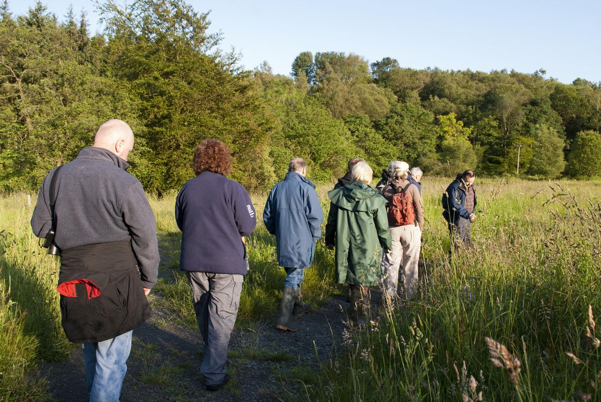 Wild Walk and Talk @ Whitnash Brook | Event in Whitnash | AllEvents.in