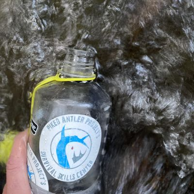 Water Purification in Survival Setting