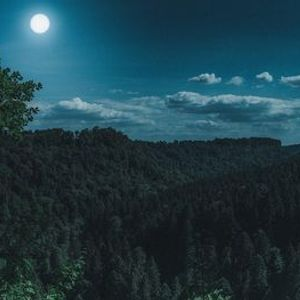 Virtual Tour of Germanys Black Forest