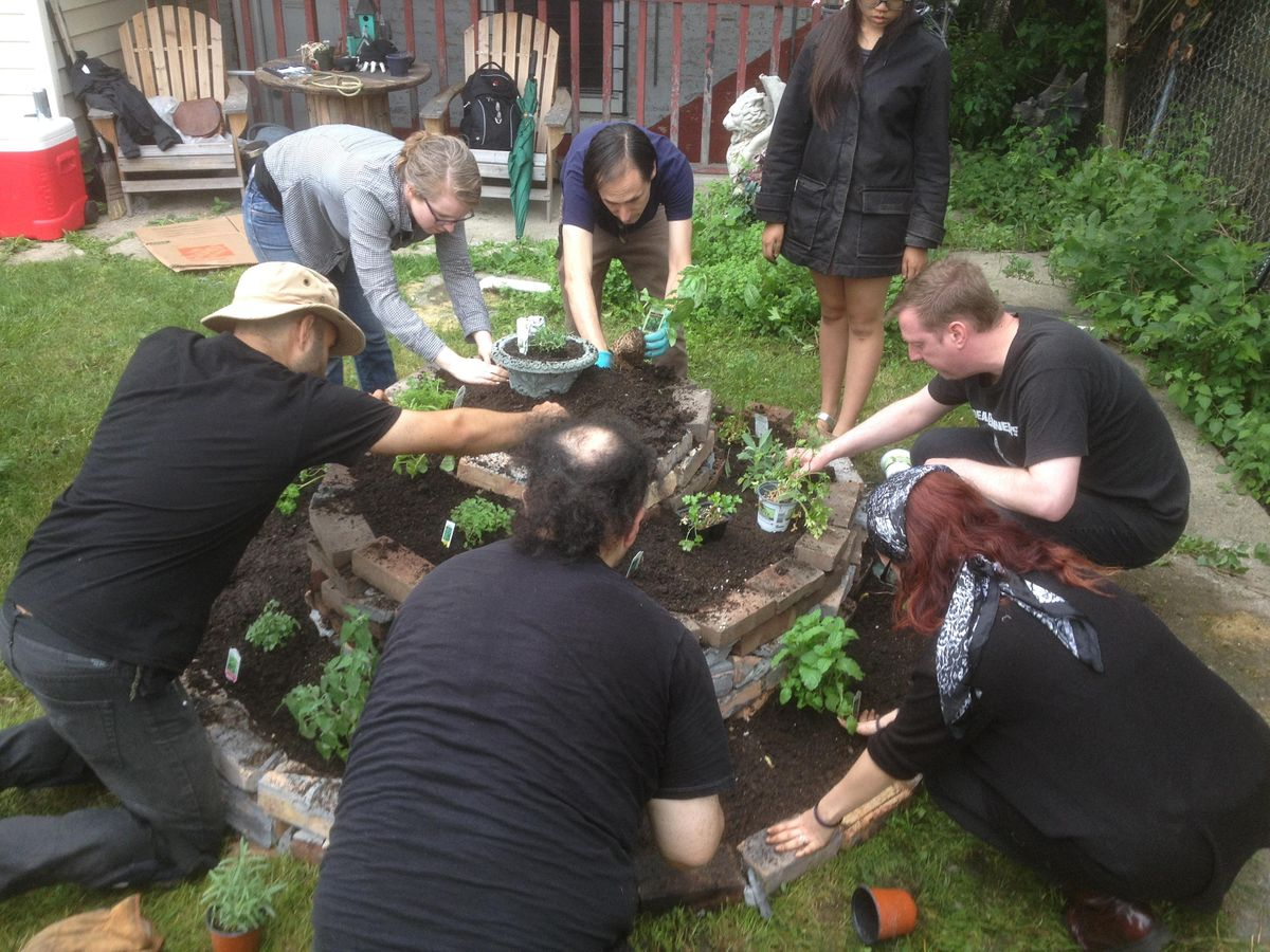 2020 Online Permaculture Design Course