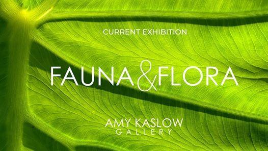 Exhibition Fauna & Flora
