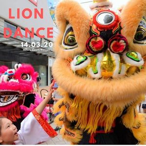 Lion Dance Festival