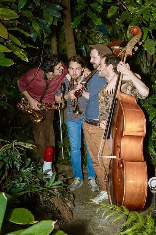 Fainschmitz - Jungle Swing