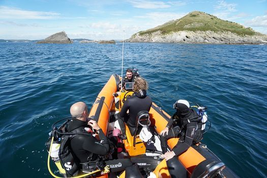Friday Night Diving   Event in Plymouth   AllEvents.in