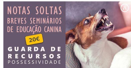 Guarda de Recursos (Possessividade), 26 June | Event in Lisbon | AllEvents.in