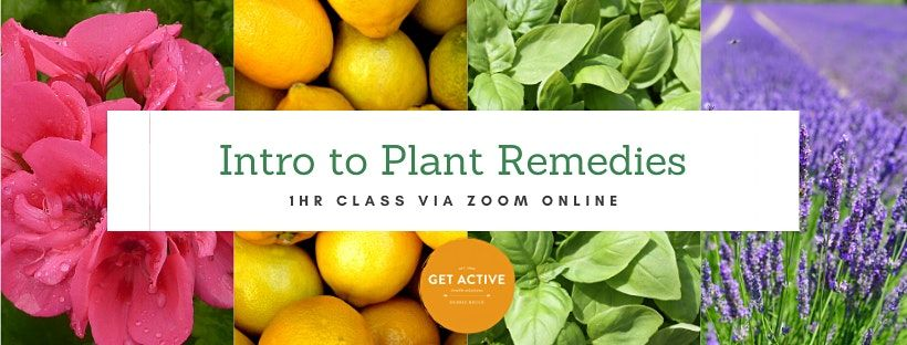 Introduction to Plant Remedies | Event in Barrack Heights | AllEvents.in