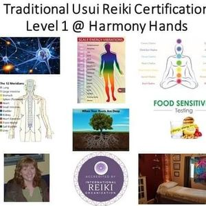 Traditional Usui Reiki Level 1 Practitioner Certification Course
