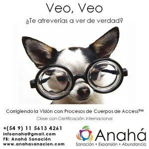 Clase Veo Veo Corrigiendo la Visin con Access Proceso Corporal Certif. Int. 15-5613-4261