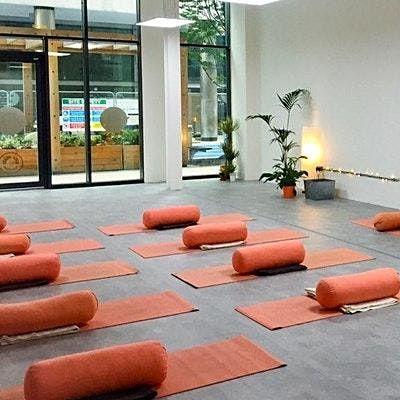 Restorative Teacher Training including Yoga Nidra & Mindfulness