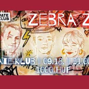 Zebra Zone koncert a JATE Klubban