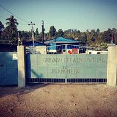 Surya Kali Tea industries