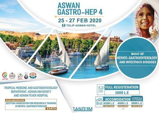 Aswan Gastro-Hep 4