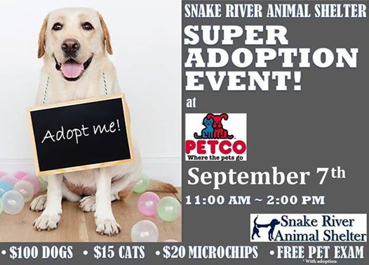 Petco SUPER Adoptions at Petco, Idaho Falls