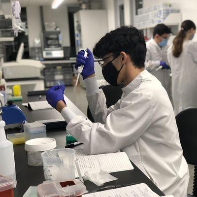 Molecular Biology  Laboratory Techniques
