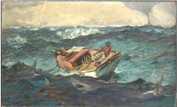 Winslow Homer  Man versus Nature. Gallery Talk with Gerald Olsen MD