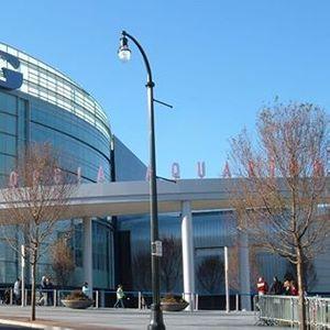 GA Public - Aquarium & Coca-Cola Educator Open House at ...