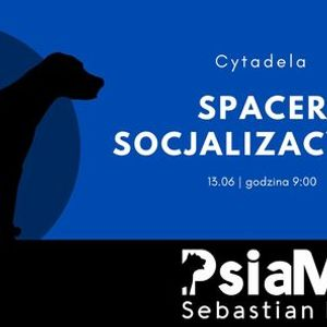 PsiaMa Spacer socjalizacyjny na Cytadeli