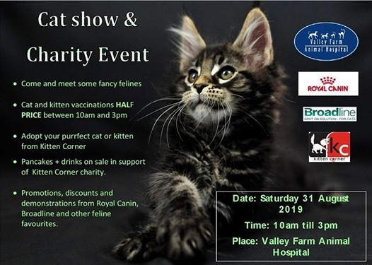 HHP Ring CFA Cat Show events in the City  Top Upcoming