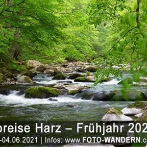 Fotoreise Harz Mai 2021