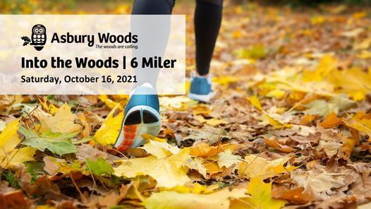 Into the Woods   6 Mile Trail Run   Event in Erie   AllEvents.in