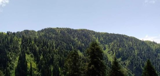 MHRs Hill/Trail Run: Trails of Galliyat Mountains Run, 6 June | Event in Islamabad | AllEvents.in