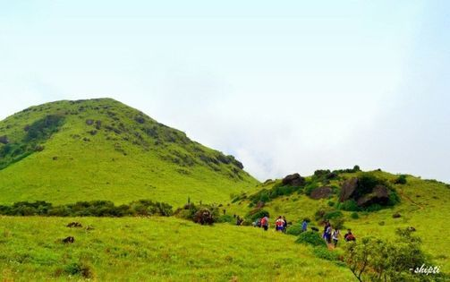 Tadiandamol Trek, 2 July   Event in Bangalore   AllEvents.in