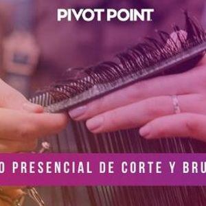 CURSO DE CORTE Y BRUSHING PRESENCIAL