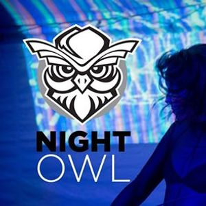 NightOwl An Interactive Party