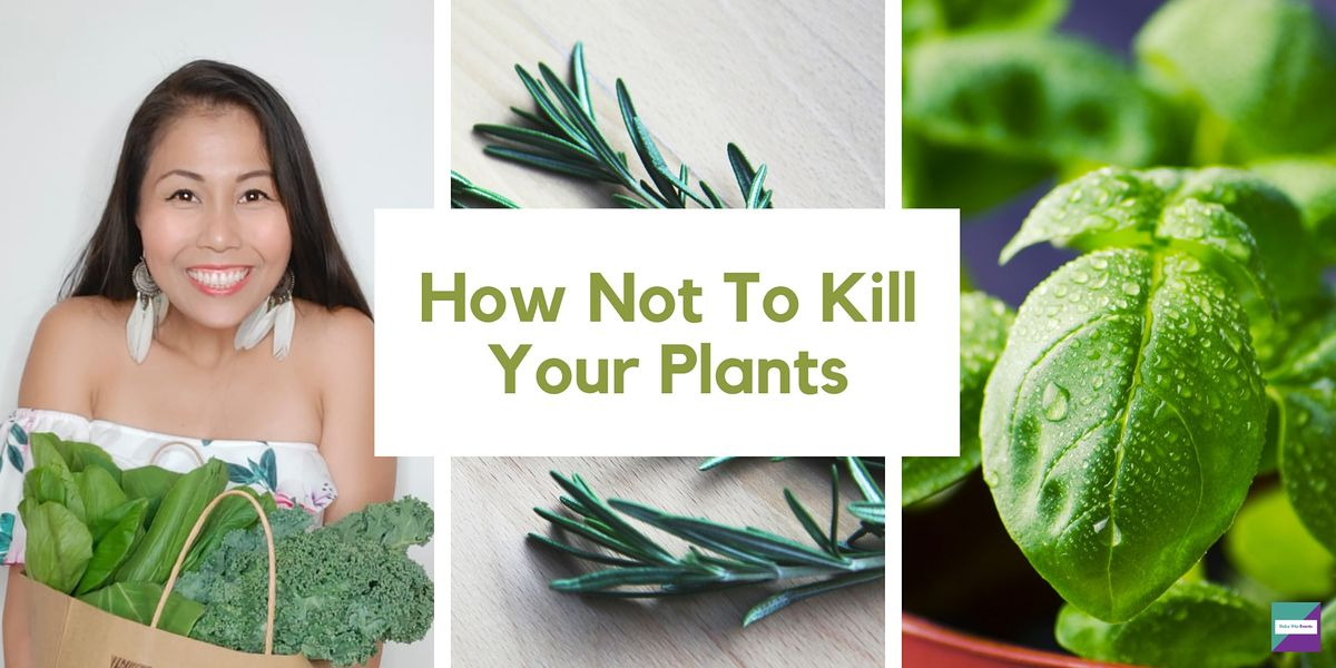 How Not To K*ll Your Plants | Event in Singapore | AllEvents.in