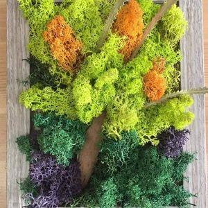 Tablou cu licheni - atelier creativ
