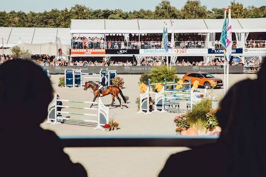FEI  WBFSH World breeding jumping championships for young horse