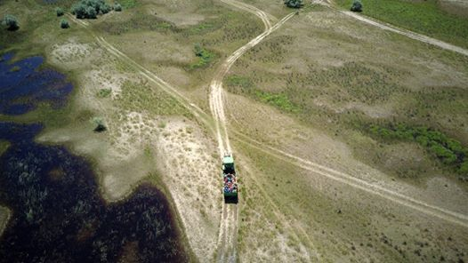 Shared Guided Day Trip in Danube Delta Tulcea - Caraorman -2020