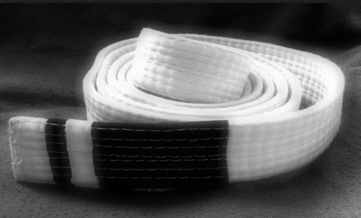 BJJ Adult Grading - White to Blue Belt, 16 August | Event in Beaudesert | AllEvents.in