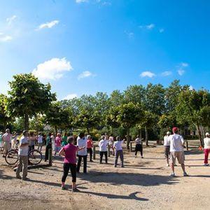 Sport en plein air  Ta Chi Chuan