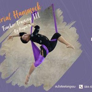 Aerial Hammock Teacher Training Course 3