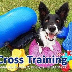 K9 Cross Training con Katia Faggio