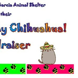 Ay Chihuahua Port Isabel Animal Shelter Fundraiser