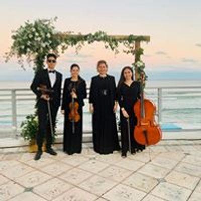 Amadeus Enterprises Weddings & Events