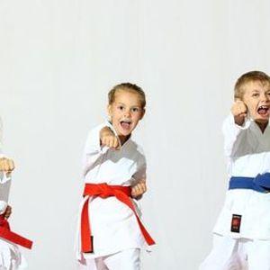Two weeks FREE Pintsize Karate