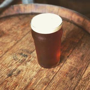 Natural History of Beer
