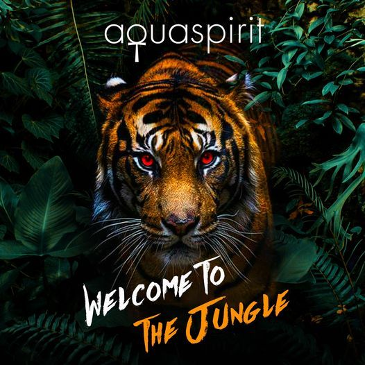 "Halloween Party Hong Kong 2020 Welcome to the Jungle"" Halloween Party 2020, aqua, Hong Kong, 31"