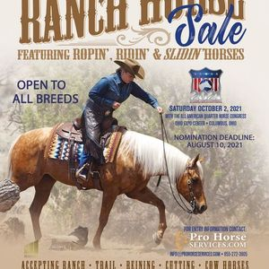 Congress Ranch Horse Sale