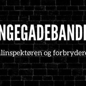 Blekingegadebanden - Kriminalinspektren og forbryderen - Odense