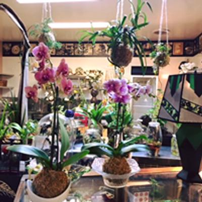 Kent Florist Brisbane Mikiko Inoue