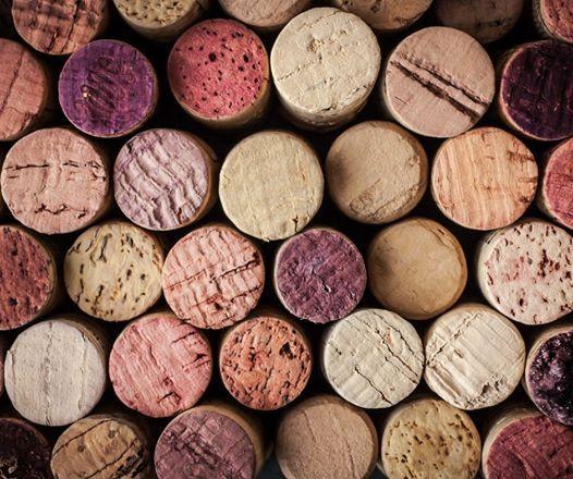 Health Wellbeing and Hobbies - Wines of the Mediterranean