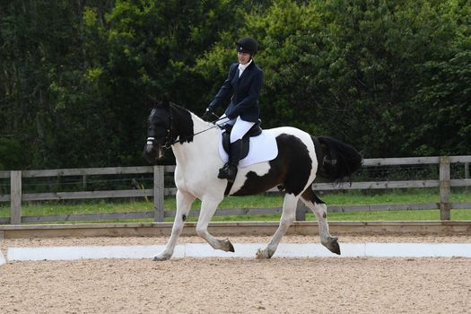 Dressage Competition, 4 July | Event in Durham | AllEvents.in