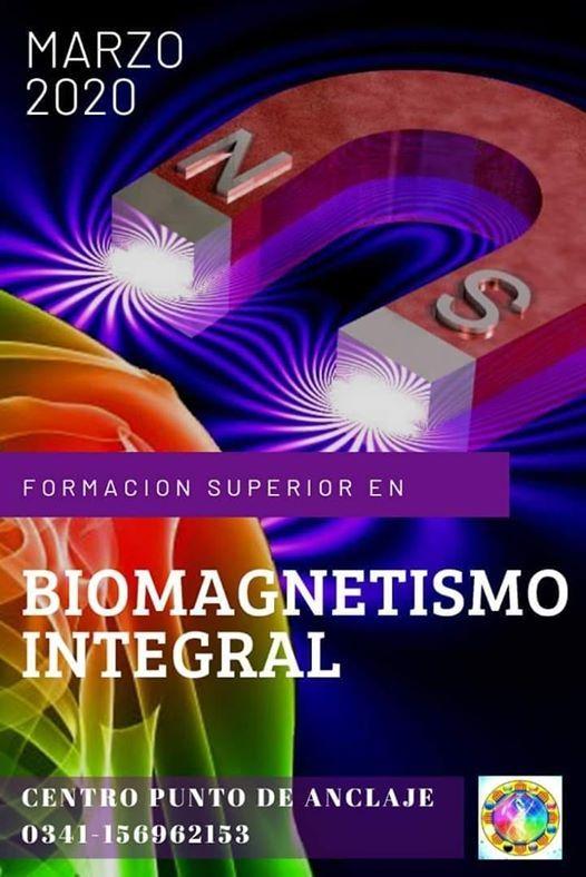 Formación Superior En Biomagnetismo 18 Modulos At Punto De