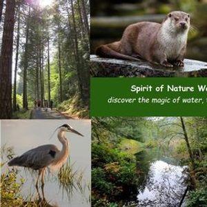 Nature Trail Walk  - self-guided