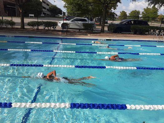 Swim Foundations with Playtri Aquatics | Event in Mckinney | AllEvents.in