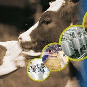 Dairy Expo India 2021